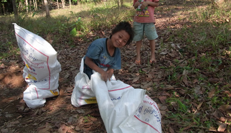 thai-earthbag.jpg